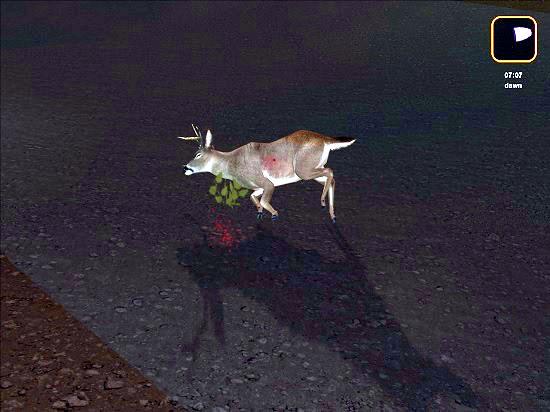 deerhunter2005-03