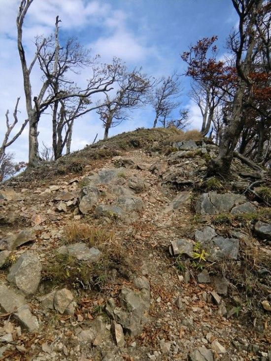 高見山登山15