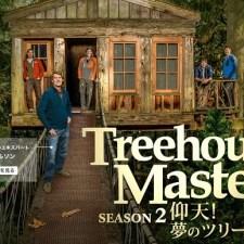 お手頃価格な樹上の別荘?「仰天!夢のツリーハウス」