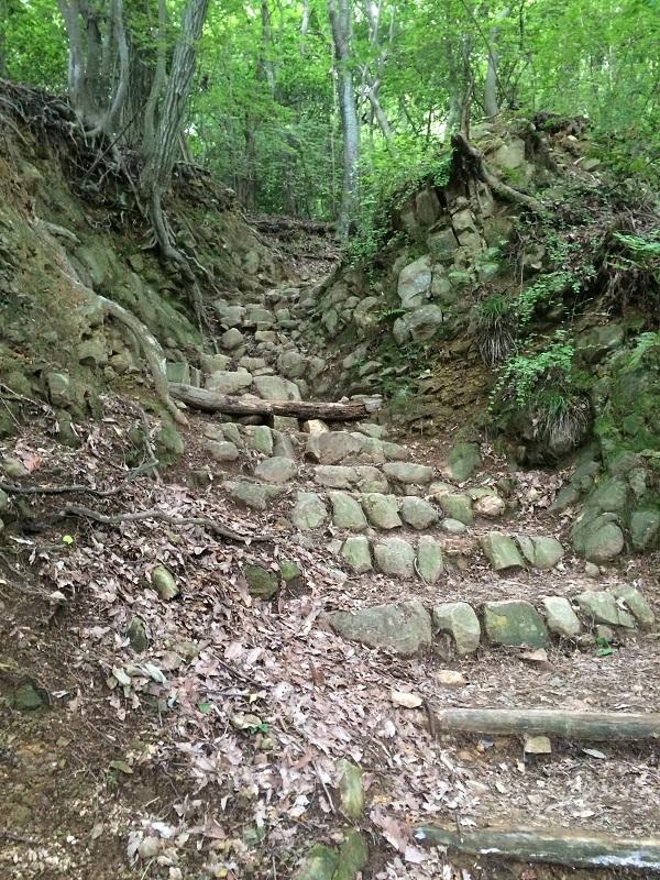 二上山雄岳への登山道