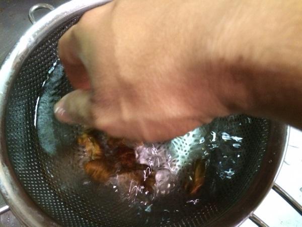 セミの幼虫試食