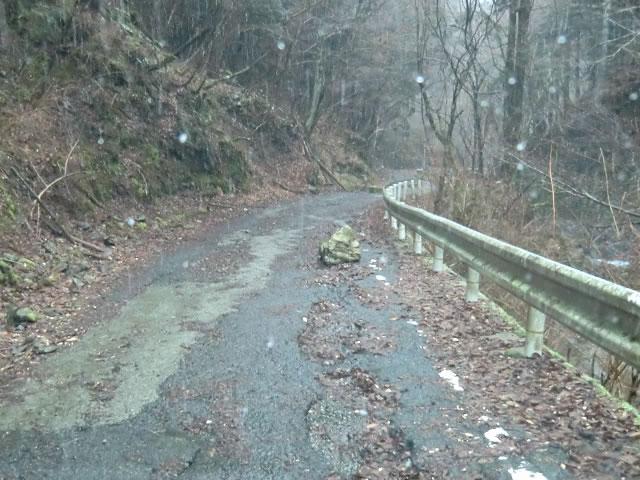 濡れた林道