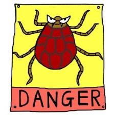 そろそろ山菜&山歩きシーズン。猟師とお役所推奨のダニ・害虫対策薬剤