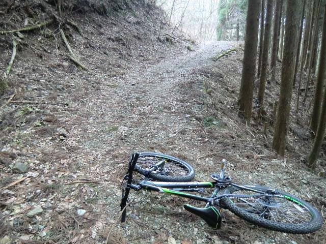 林道とMTB