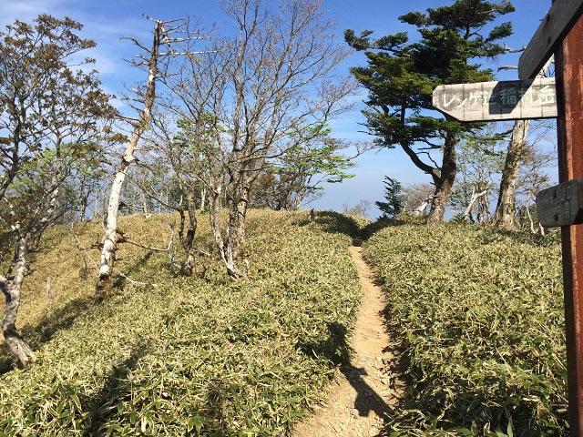 山上ヶ岳登山ルート