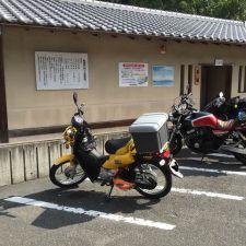 獲物の生態調査。クロスカブで奈良公園へシカの観察に行ってきた。