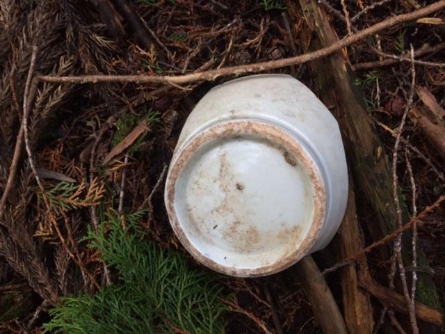 山で見つけたヘンなもの 陶器の破片