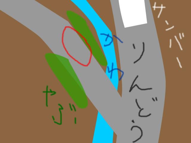 この道、走るべからず。コンクリ林道の危険性