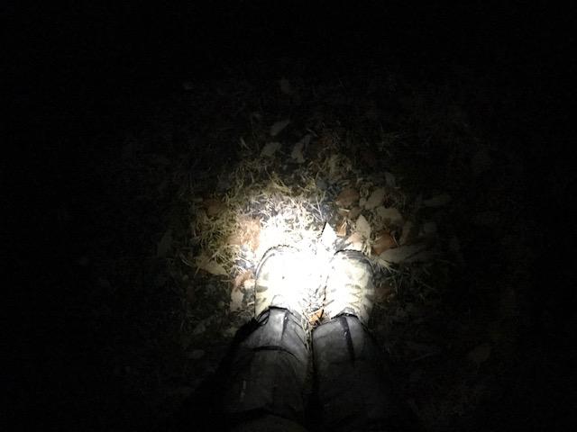 夜の山中で不足を感じたのでヘッドライトを新調したら助かった話。