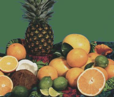 Florida oranges, grapefruit, tangerines, lemons, pineapple