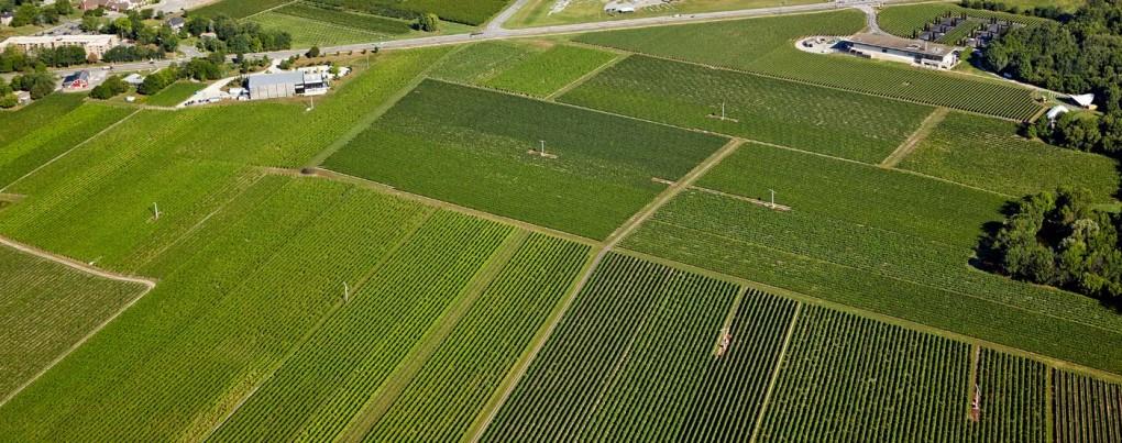Aerial Photographer Toronto Gta And Ontario Bp Imaging