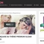 WP Traduction: la boutique en ligne de traductions françaises de thèmes et plugins WordPress