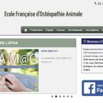 EFOA :  formation professionnelle d'ostéopathe animale