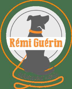 Rémi Guérin éducateur canin et comportementaliste dressage de chien à Bordeaux