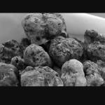Truffeshenras : truffes en conserve de bonne qualité