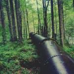 Smce-curage : entretien de canalisations et égouts dans le Sundgau alsacien