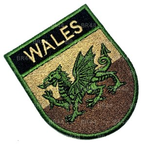 BP0190ET 03 Bandeira País Gales Bordada passar ferro/costura