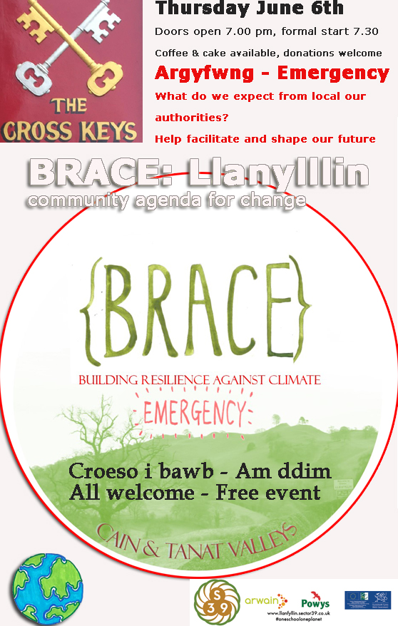 Brace poster #permaculture #climate change #llanfyllin