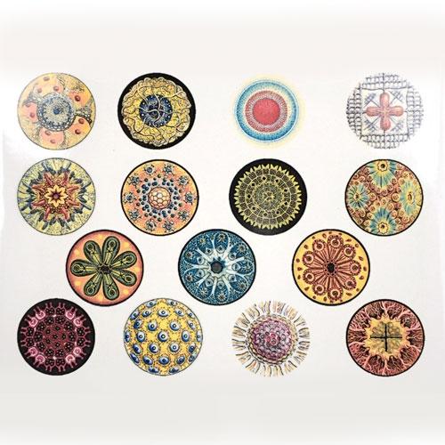 decalsfull-diatoms