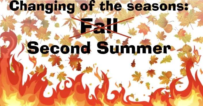 September Second Summer Special – firing supplies