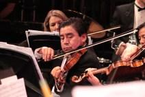 philharmonic (318)