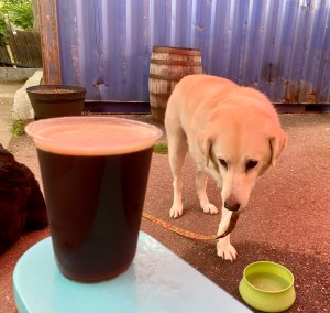 Lucy With the Black Is Beautiful Stout at Goldspot Brewing