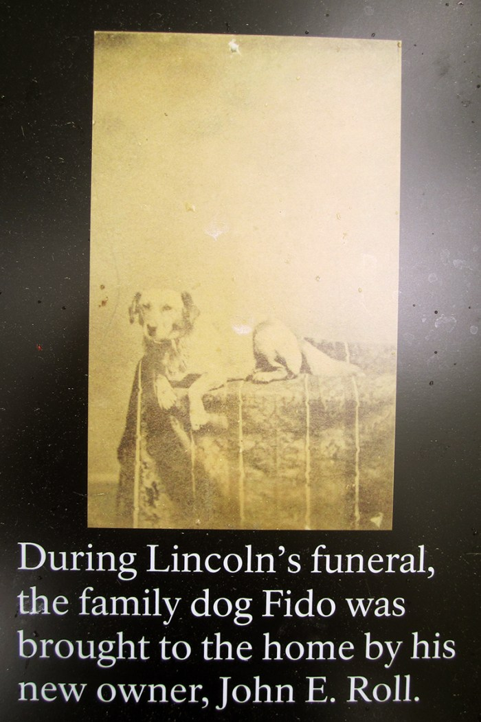 May 4th: Lincoln's Dog (Springfield, IL)