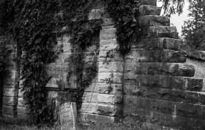 Cemetery, Champaign, IL
