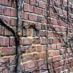 January 30th: Brick Wall