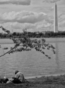 April 3rd: Washington Monument from Tidal Basin