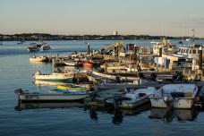 July 30: Docks