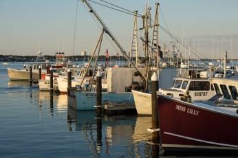 July 31: Docks