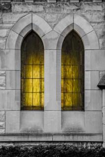 March 8: Sanctuary Windows