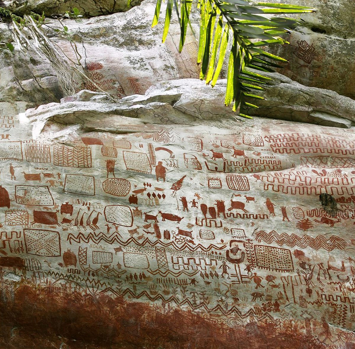 Colombia Amazon rain forest rock art animals humans archaeologists paintings