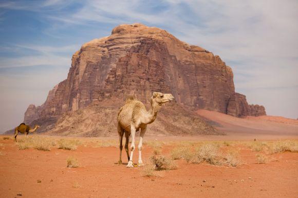Wadi Rum Desert Jordan otherworldly landscapes