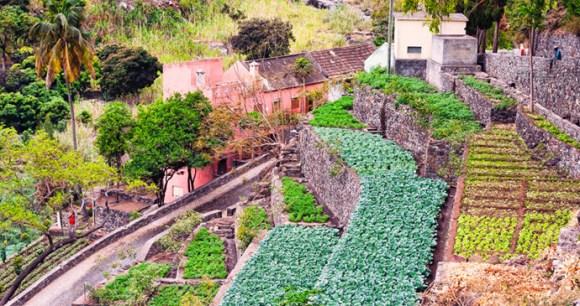 Farm cut into the hillside, Santo Antão, Cape Verde
