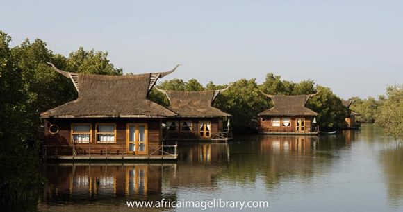 Mandina Lodges The Gambia Africa by Ariadne Van Zandbergen