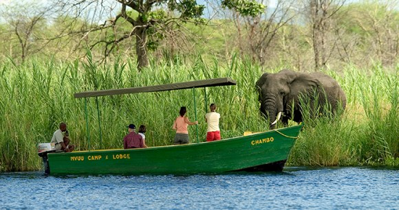 Water safari Liwonde National Park Malawi by Dana  Allen  Central African Wilderness Safaris