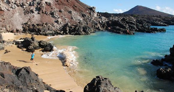 Comfortless Cove Ascension Island Saint Helena by Tricia Hayne
