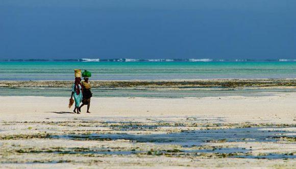 Jambiani beach Zanzibar Tanzania by David Min, Shutterstock