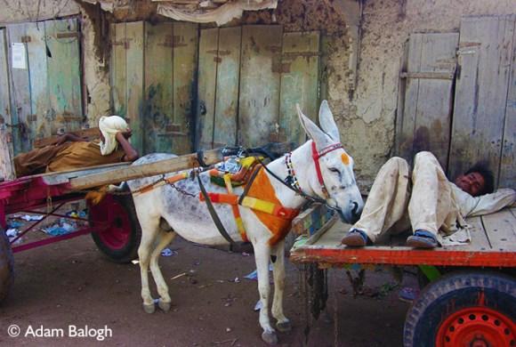 Thatta Market Pakistan by Adam Balogh