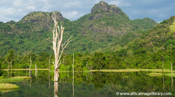 Gal Oyo National Park Sri Lanka by Ariadne Van Zandbergen