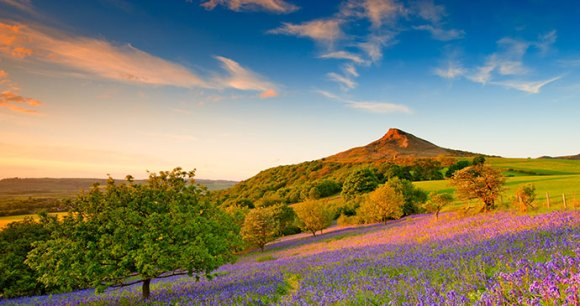 Roseberry Topping, North Yorkshire by Colin Carter, NYMNPA