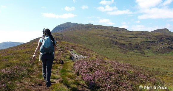 Meall Fuar-mhonaidh, Highlands, Small Hills by Neil S Price
