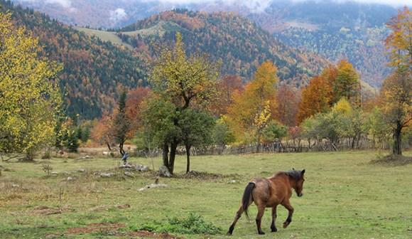Horseriding, Kosovo by BeInKosovo
