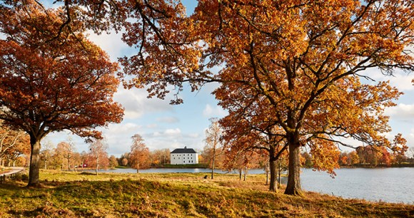 Autumn Torpa Stenhus West Sweden by Jonas Ingman, vastverige.com