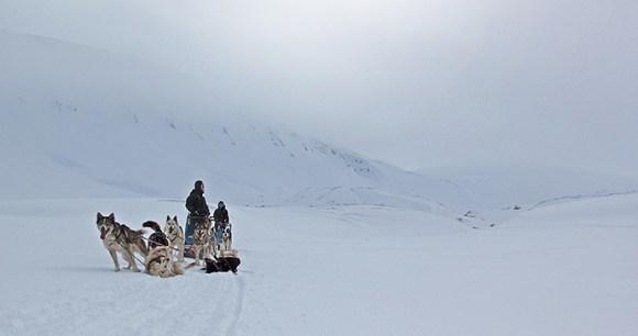 Dog sledging, Svalbard by Marcela Cardenas, www.nordnorge.com
