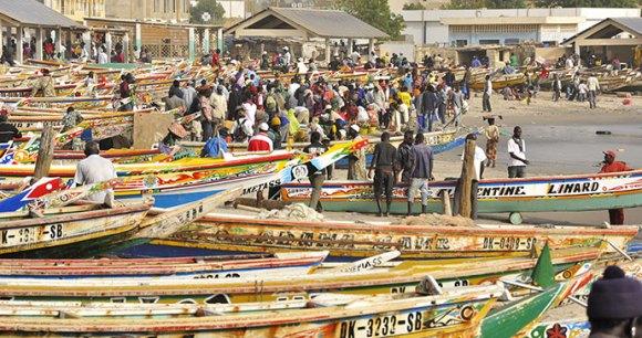 Fish market Dakar Senegal by elisabethandi Dreamstime