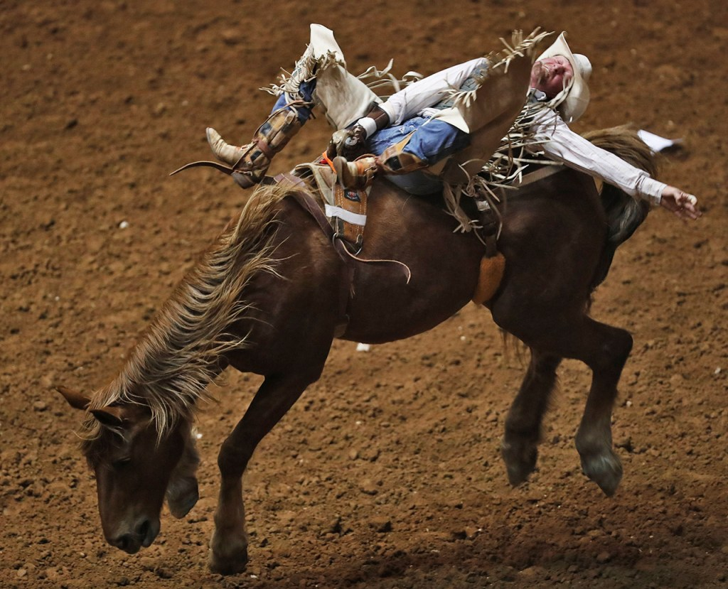 Jared Green, from Socoro, N.M., holds onto the reigns in the bareback riding competition during the ABC Pro Rodeo, Saturday, March 31, 2018, at Lubbock Municipal Coliseum in Lubbock, Texas. [Brad Tollefson/A-J Media]