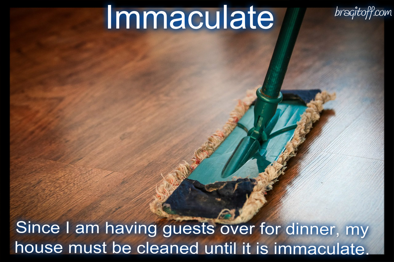 Image result for immaculate definition